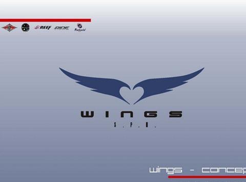 Wings – Bear – Reef – Concept